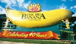 Coffs-Harbour-Big-Banana