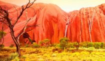 Uluru in the wet