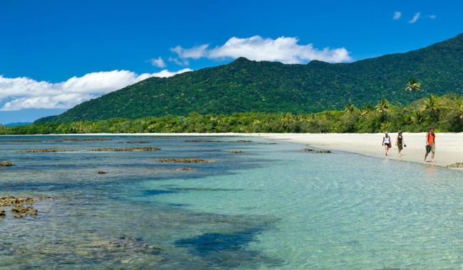"""Cape Tribulation is where the rainforest meets the reef""  – Dale Flack, Tourism Tropical North Queensland"