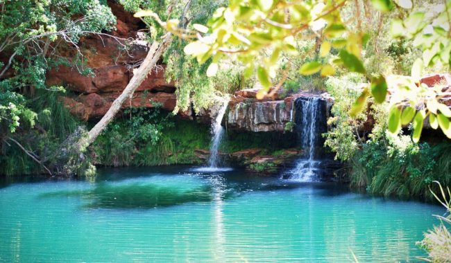 063 Fern Pool, Karijini National Park, WA