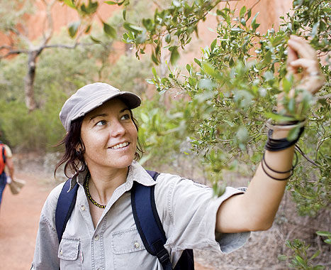 Jodie plucks bush plums on the walk. Image by Grenville Turner