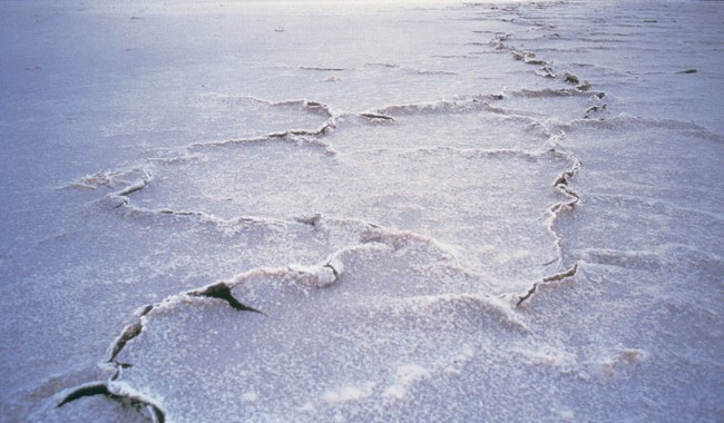 Up close with the baking surface of Lake Eyre. Image by Tourism South Australia