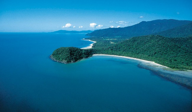 Swim where the Rainforest meets the Reef. Image by Tourism QLD