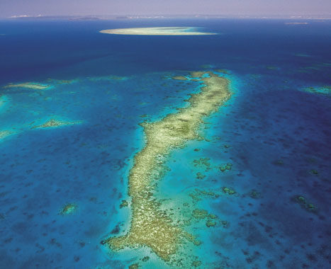 The Ribbon Reef near Lizard Island. Image by Tourism Qld