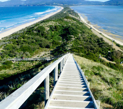 The magnificent view from Truganini Lookout at The Neck, which seperates North and South Bruny Island