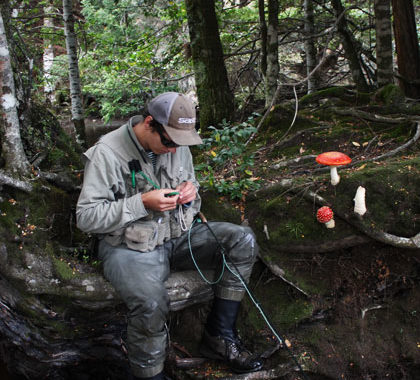 Angler and fungi within a temperate rainforest.