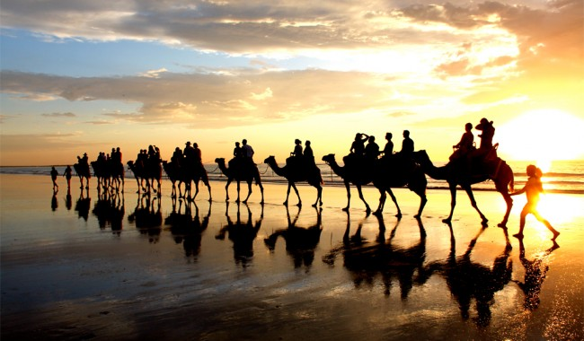 Sunset Camel Ride in Broome