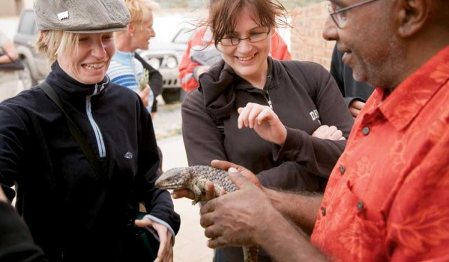 A blue tongue lizard captivates two Italian visitors.