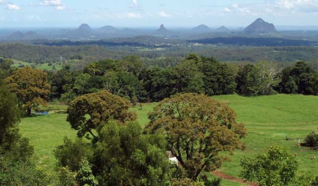 The view to the Glass House Mountains from the nearby Mary Cairncross lookout.