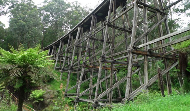 The trestle bridge at Noojee