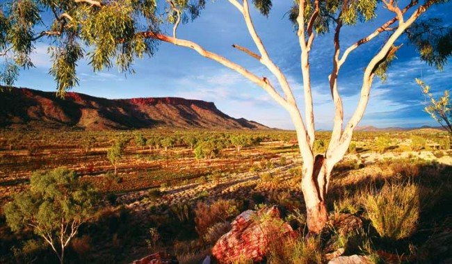 The West MacDonnel Ranges - Tourism-NT