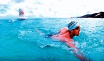 The QLD Ocean Swim Series