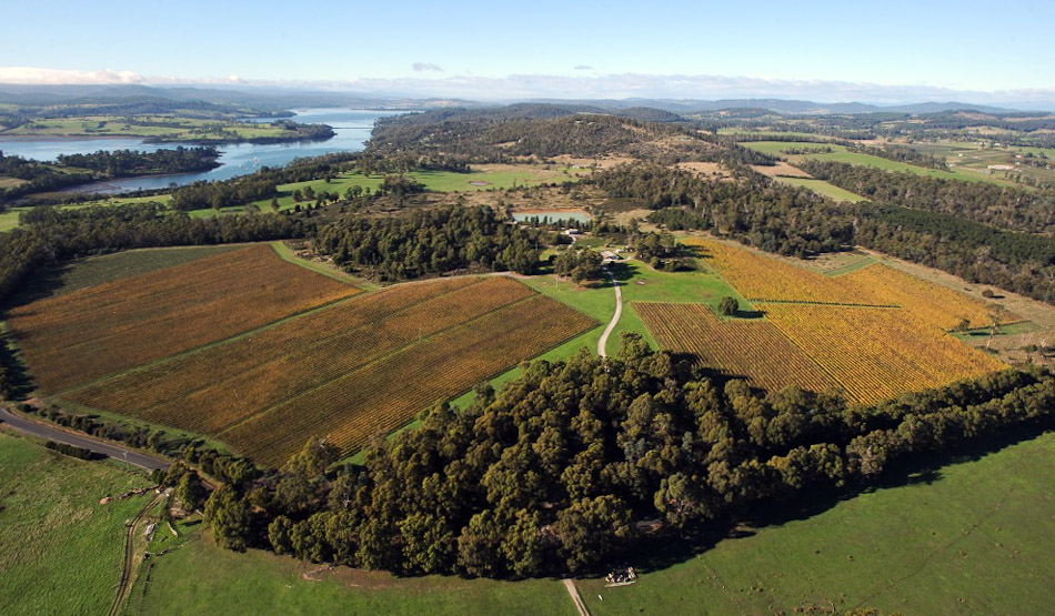 Launceston, above Goatyhill Wines
