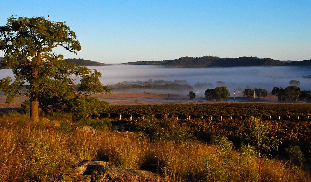 100 Incredible Travel Secrets 32 Granite Belt Wine