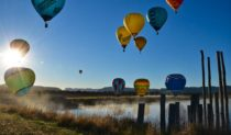 Balloons soar in the Hunter Valley, NSW. By Amanda Bolwarra Heights, NSW.