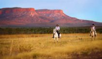 The best Christmas present ever? A tour of  Home Valley Station in the East Kimberley.