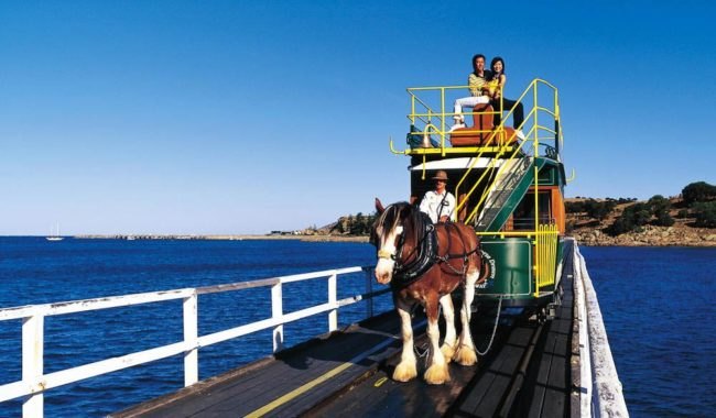 The horse-drawn tram at Victor Harbour, SA, has been running since 1894.