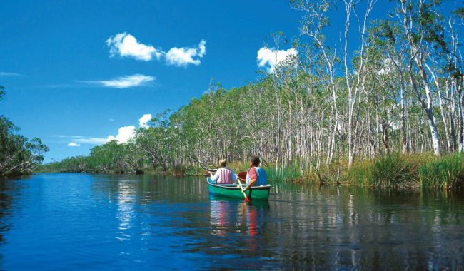 Gentle canoeing of Lake Cootharaba, QLD.