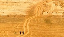 Step by step through the lonely Simpson desert.