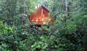 A little 'Rainforest Romance' at Canopy Treehouses, Cairns Highlands?