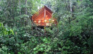 A little 'Rainforest Romance' at Canopy Treehouses, Cairns Highlands?
