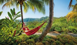 Tropical relaxation therapy: North Queensland (Brad Newton).