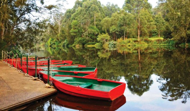 Glamping in Sydney's Lane Cove National Park? Yep!
