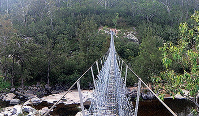 australia hiking, bush walking, bridge