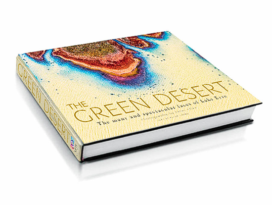 Win: The Green Desert by Peter Elfes.